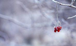 Vem aí um Natal com muito frio