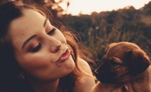 De cachorro a adulto, quando devemos trocar a ração do nosso cão?