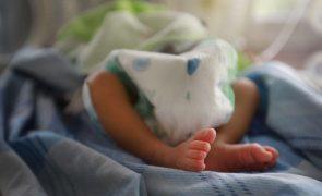 UNICEF estima que nasceram hoje mais de 370.000 crianças no planeta