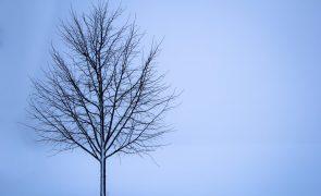 Meteorologia: Previsão do tempo para terça-feira, 5 de janeiro