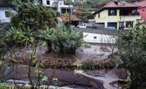 Mau tempo: Proteção Civil não registou de danos humanos na Madeira