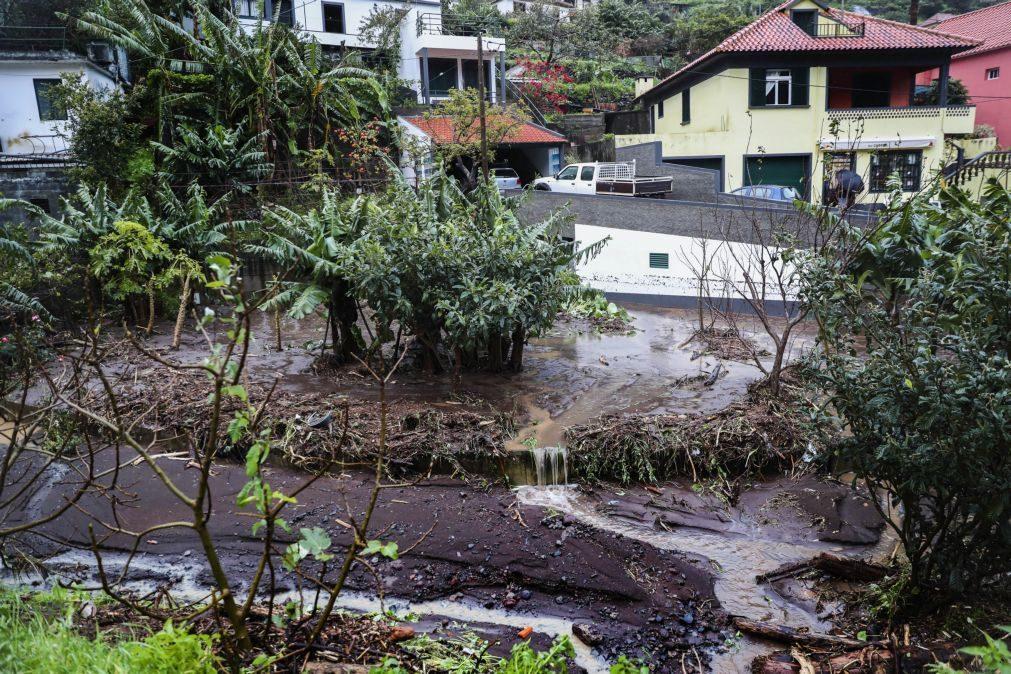 Mau tempo: Proteção Civil regista 96 ocorrências na Madeira