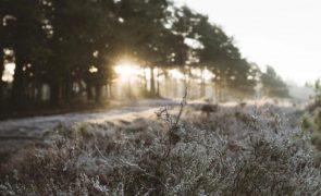 Meteorologia: Previsão do tempo para segunda-feira, 11 de janeiro