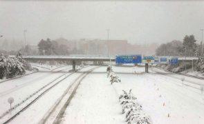 Trezentos dos mais de 11 mil camiões retidos devido à neve em Espanha voltaram às estradas