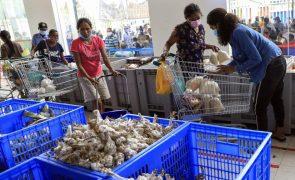 Governo timorense não quer sair já da categoria de países menos desenvolvidos da ONU