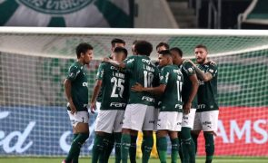 Palmeirenses unem-se para apoiar equipa do técnico português Abel Ferreira na Libertadores