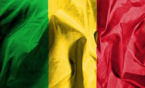 Mali: Número de 'capacete azuis' mortos hoje sobe para três, todos marfinenses