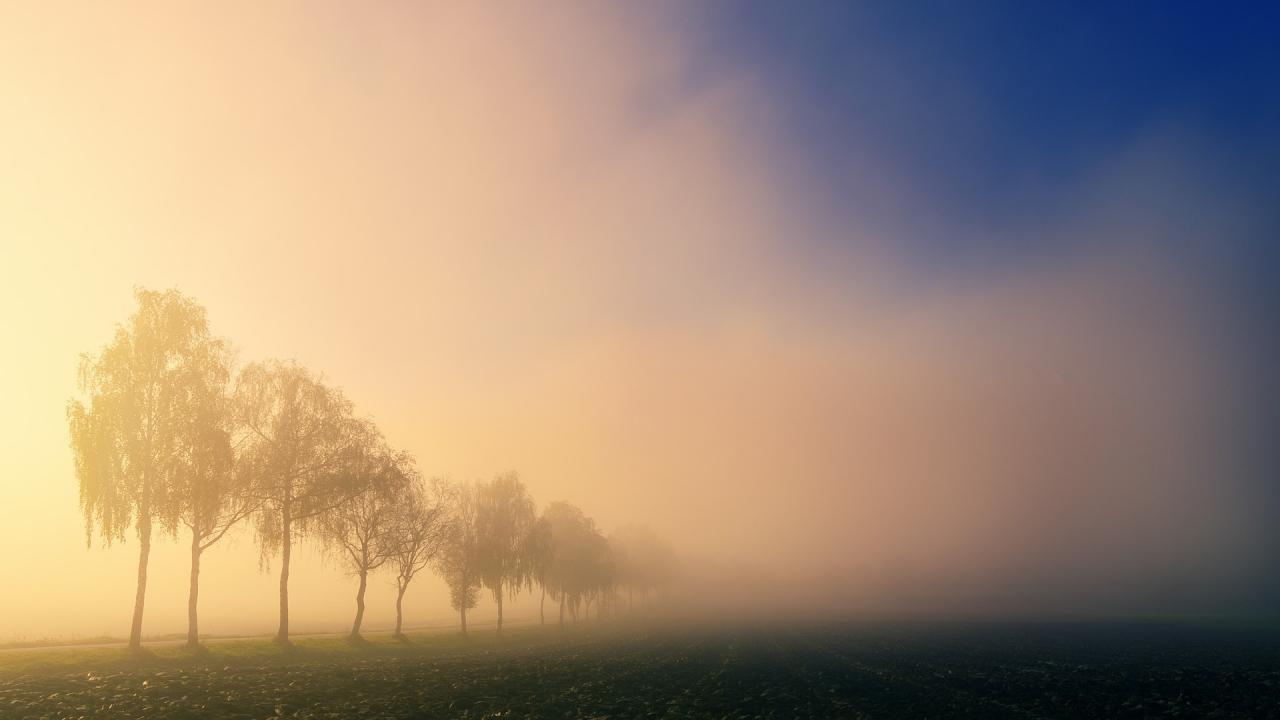 Meteorologia: Previsão do tempo para sexta-feira, 15 de janeiro