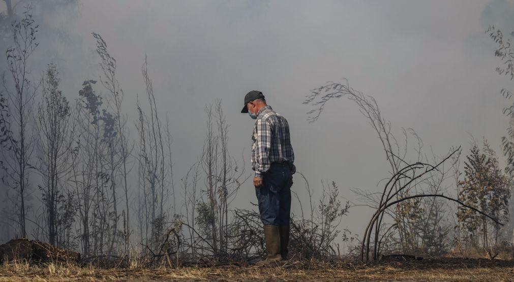 Prorrogado prazo para apoio a explorações agrícolas afetadas por fogos de 2020