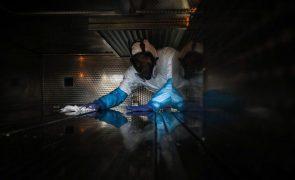 Covid-19: Hospital de Aveiro reforça morgue com contentor devido a aumento de óbitos