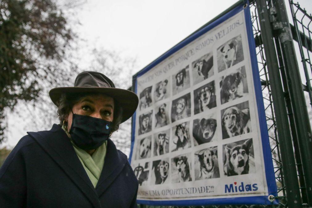 Presidenciais: Ana Gomes condena «protesto violento» contra Ventura