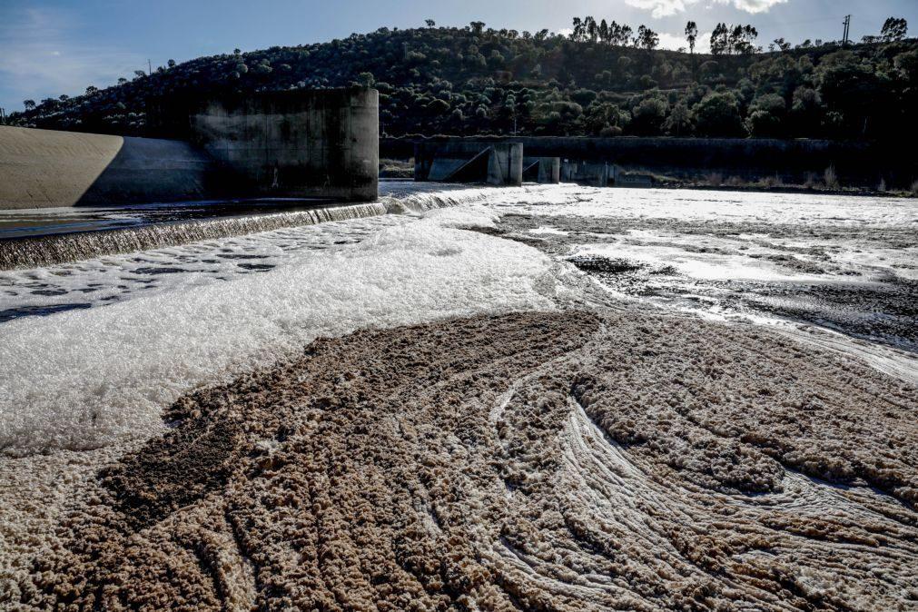 Movimento proTejo vai centrar atuação na sensibilização para despoluição dos afluentes do rio
