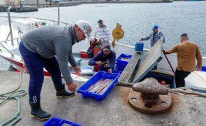 Mais de 500 pescadores açorianos começam a receber apoios na terça-feira