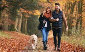 Saiba por que razão deve fazer uma caminhada após as refeições