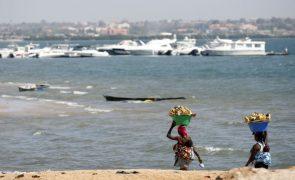 Proteção e conservação da biodiversidade nas prioridades do Governo angolano