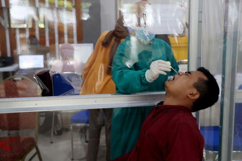 Covid-19: Universidade de Aveiro cria teste de saliva para substituir zaragatoa