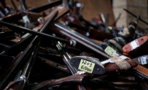 Parlamento dá mais tempo para entrega voluntária de armas não registadas