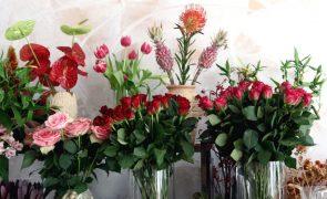 Covid-19: Setor das flores espera