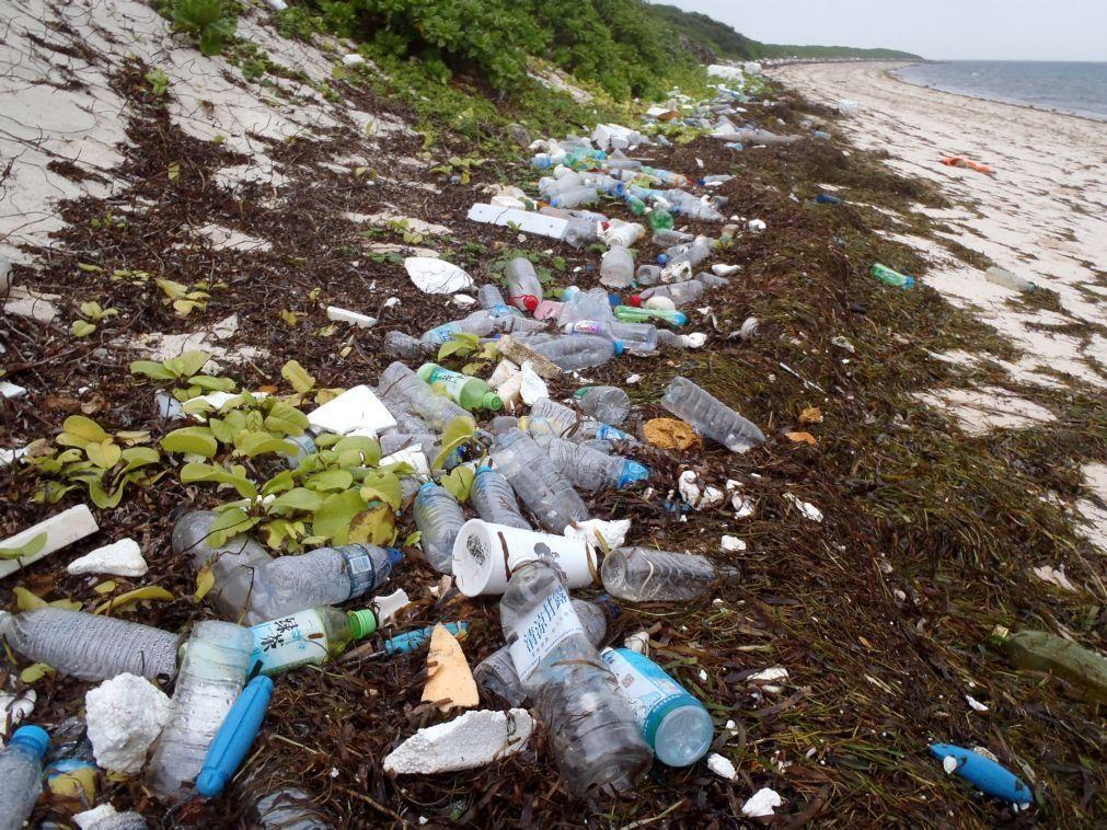 Projeto europeu vai remover, reciclar e devolver o lixo marinho ao mercado
