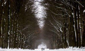 Países Baixos com primeira tempestade de neve em 10 anos