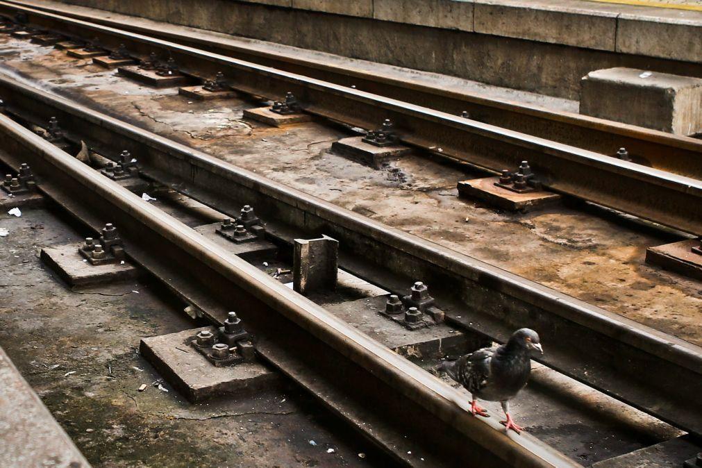 Linha do Douro interrompida devido a queda de pedras entre Régua e Pinhão