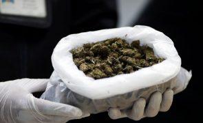 Polícia brasileira apreende 29 toneladas de marijuana na fronteira com o Paraguai