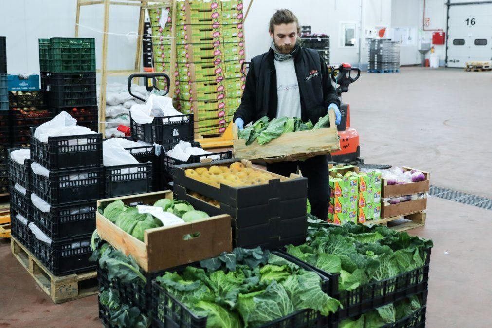 Exportações de frutas, legumes e plantas sobem 4,4% para 1.683 ME em 2020