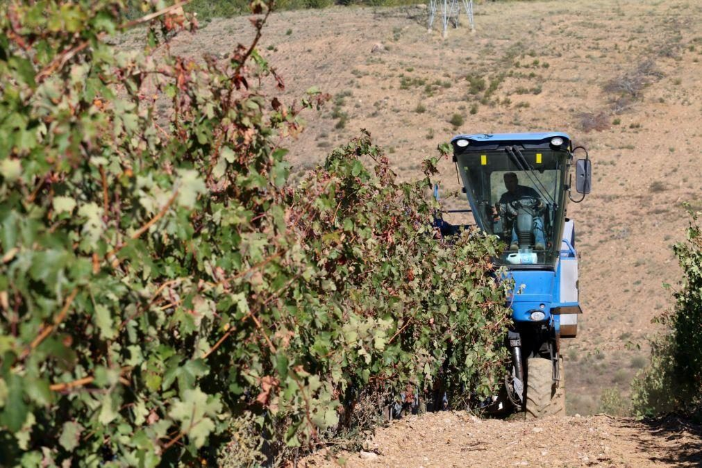 Governo altera regime da pagamentos base para jovens agricultores e pequena agricultura