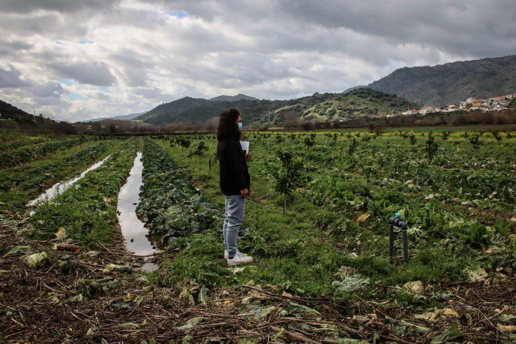 Agricultora de Moncorvo responsabiliza EDP por prejuízos causados pelas cheias