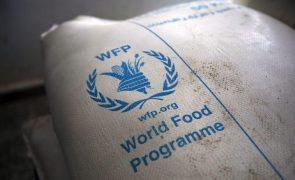 Programa Alimentar Mundial alerta que 12,4 milhões de pessoas na Síria estão a passar fome