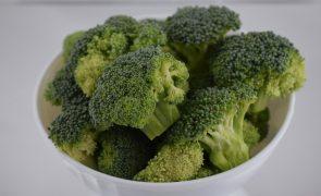 Estudo conclui que constituintes de brócolos ativam sistema imunitário
