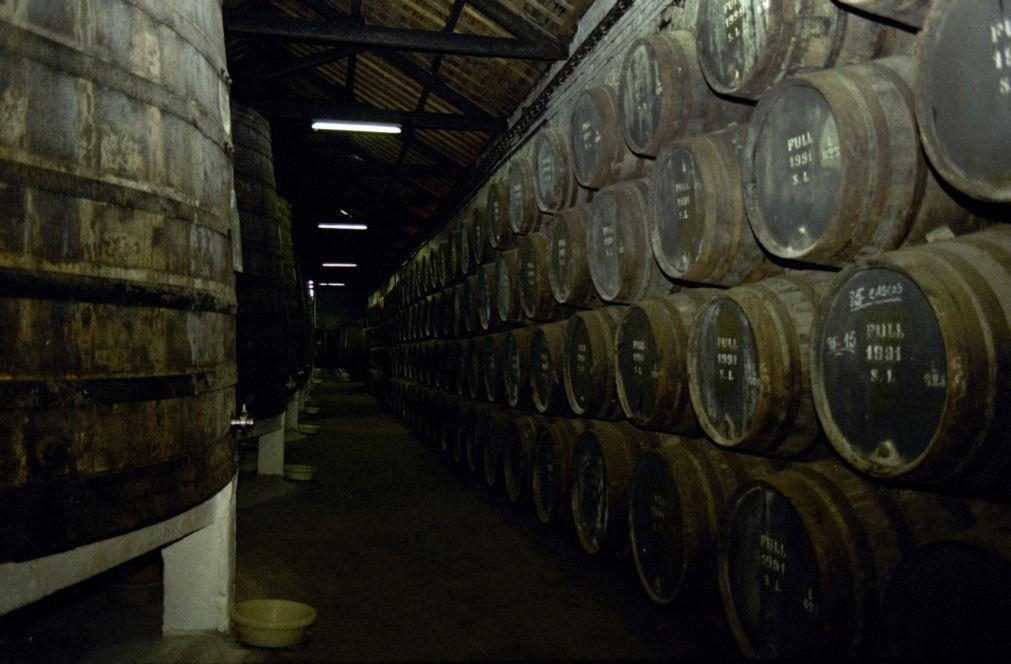 Covid-19: Caves de Vinho do Porto com menos 81,8% de visitantes em 2020