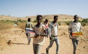 Etiópia: ONU considera situação de malnutrição em Tigray