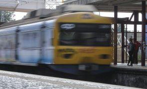 Interrompida circulação de comboios na Linha de Cascais devido à queda de árvore