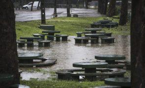 Portugal com 616 ocorrências devido ao mau tempo até às 18h00