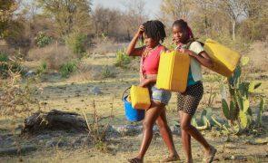 Seca e fome no sul de Angola ganham proporções alarmantes