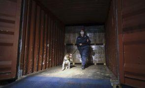 Cerca de 23 toneladas de cocaína apreendidas em portos na Alemanha e Bélgica