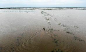 Moçambique/Ciclones: OIM alerta para