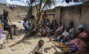 Moçambique/Ataques: Frelimo aponta