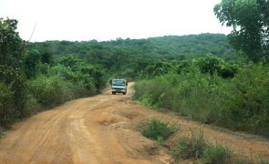Ambientalista angolano denuncia exploração de recursos