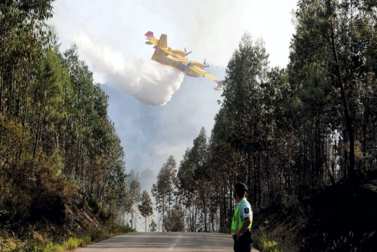 Proteção Civil admite controlo do incêndio que começou em Pedrógão Grande até final da manhã