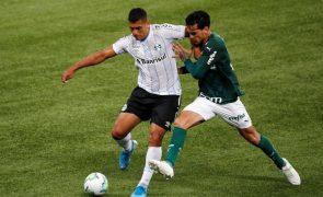 Abel Ferreira leva Palmeiras à conquista da Taça do Brasil
