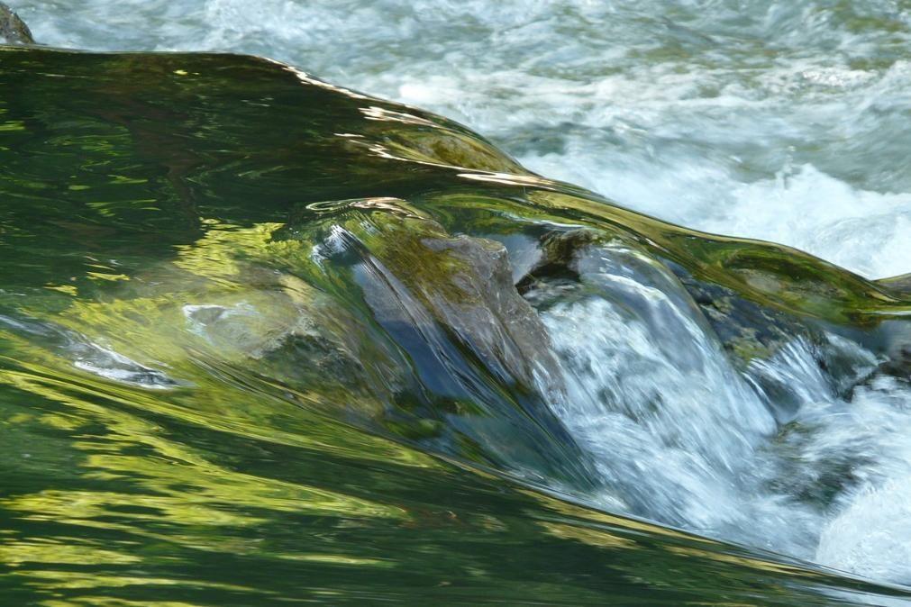 Jovem atirou-se ao rio para apanhar bola e desapareceu