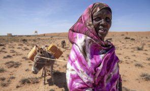 Cerca de 2,7 milhões de pessoas na Somália em risco de fome