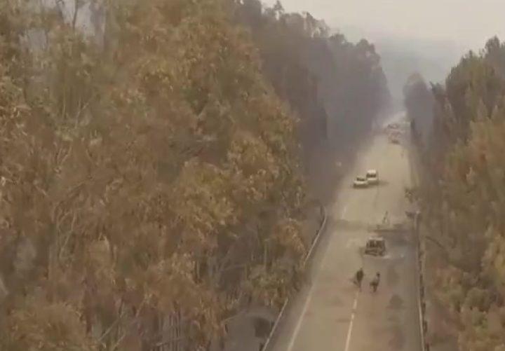 Drone sobrevoa estrada da morte em Pedrógão Grande