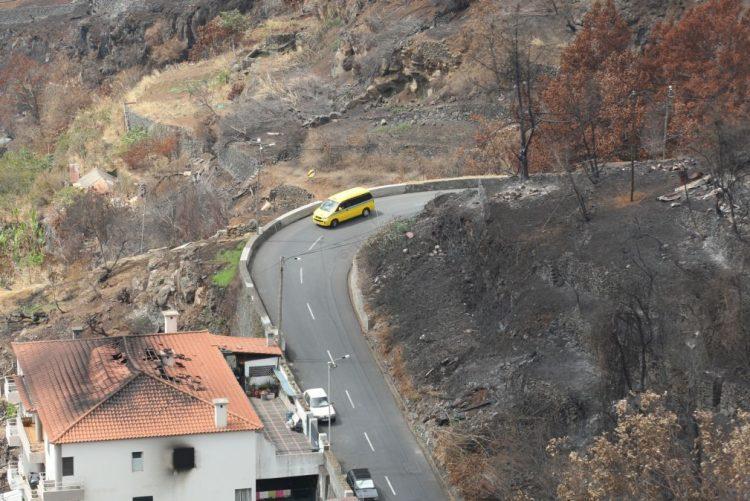 Incêndios: 60 fogos atingidos na Madeira estão totalmente recuperados - Governo Regional