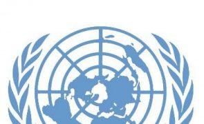 ONU melhora previsões e vê África a crescer até 3,1% este ano