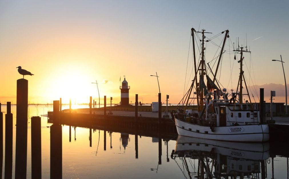 UE fecha acordo de pescas com Reino Unido e Noruega