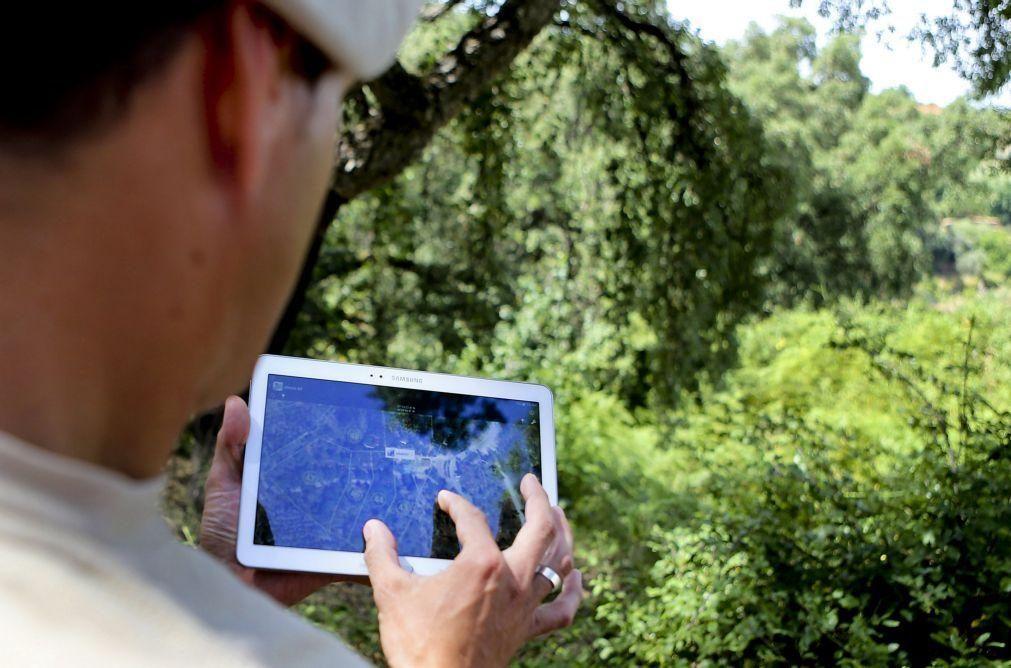 GNR identifica 7.975 locais de possível incumprimento na limpeza de terrenos