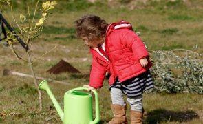 Setor agrícola responsável por 75% da água utilizada em Portugal -- estudo